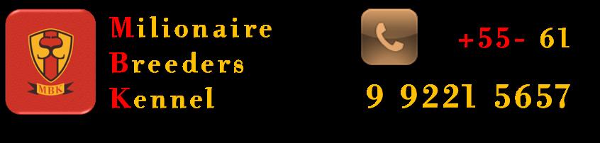 BeagleBrasil